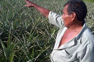 Los entornos de las pequeñas unidades productivas de la Red Naturaleza en Bolivia