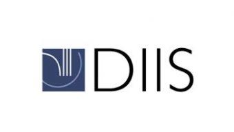 Danish Institute for International Studies (DIIS)