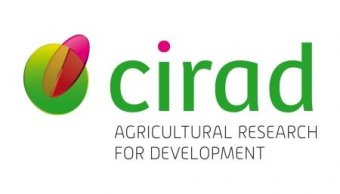 Partners – International Cooperation Center In Agricultural Research for Development (CIRAD)