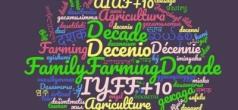 Lanzamiento mundial del Decenio de las Naciones Unidas de la Agricultura Familiar.